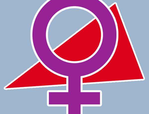 Logo Linker Feminismus